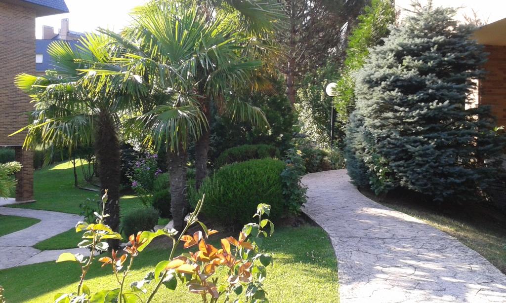 mantenimiento-jardines-2